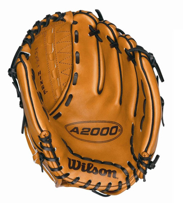 10. Wilson Dual Hinge Web Saddle Glove