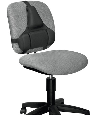 3. Fellowes Professional Series Back Support, Black