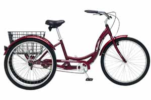 The 10 Best Tricycles for Adults for Sale in 2018