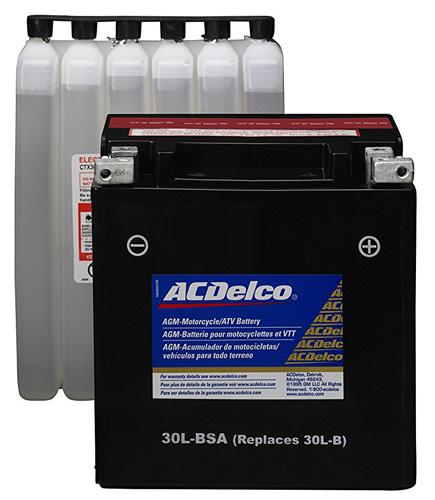 5. ACDelco ATX30LBSA Specialty AGM Powersports JIS 30CL-B-BSA Battery