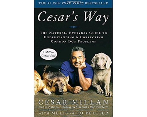 5. Cesar's Way: The Natural, Everyday Guide to understanding and correcting common dog problems