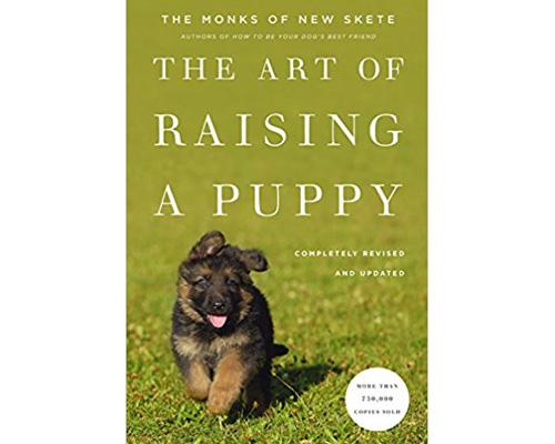 8. The Art of raising a puppy