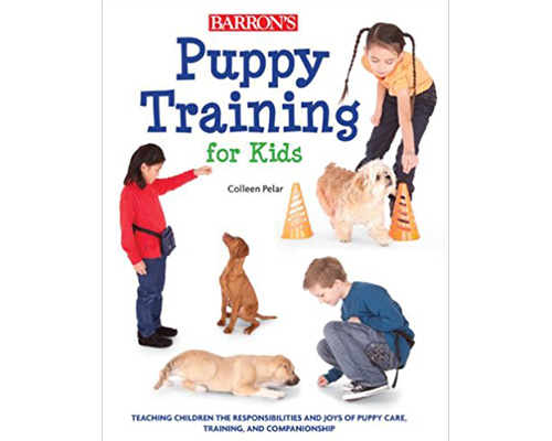 7. Puppy training for kids: Teaching the children the responsibilities and joys of puppy care, training and companionship
