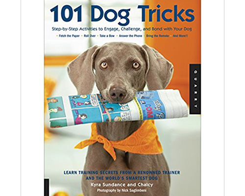 4. 101 Dog tricks: Step by Step Activities to engage, challenge, and bond with your dog